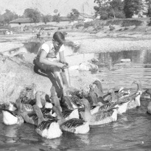 Димитри Иванов като момче храни гъските в реката Чая край къщата им в с. Катуница край Асеновград.